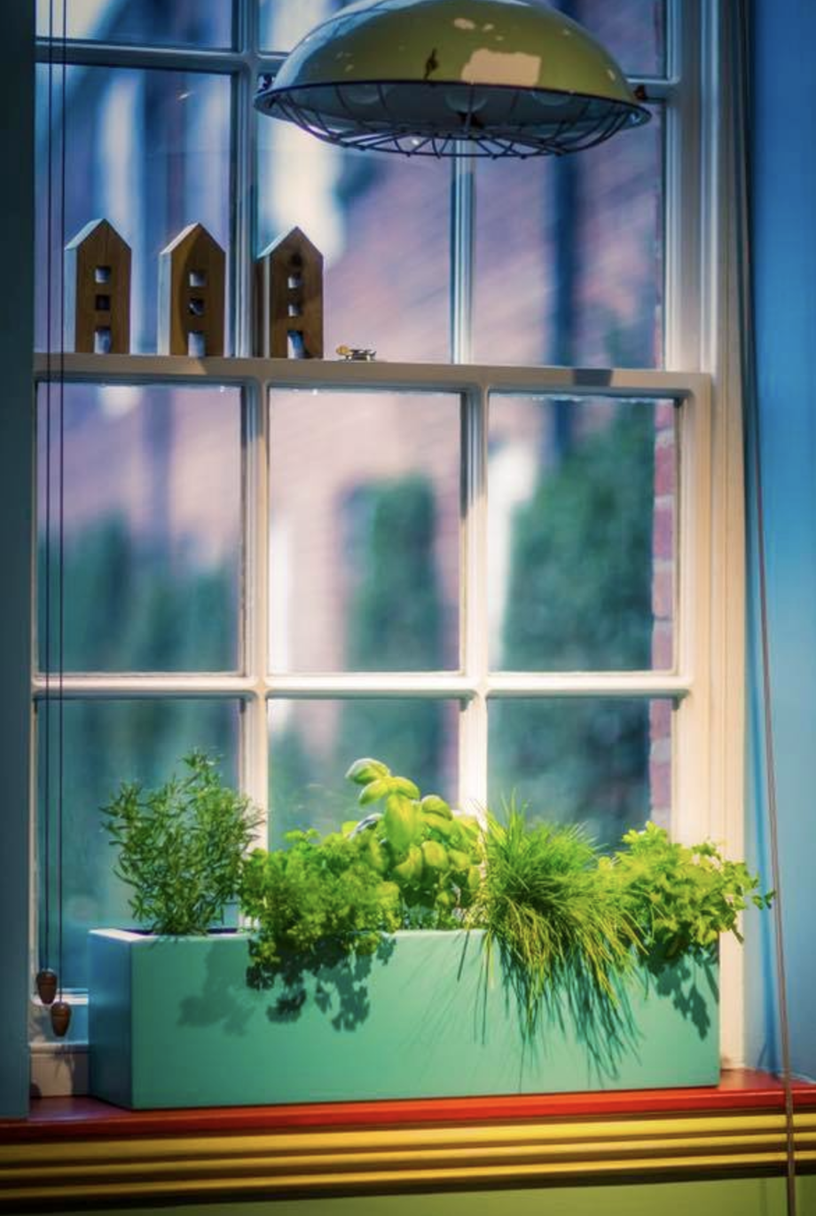 Window Boxes Amp Trough Planters From Potstore Co Uk Any Colour